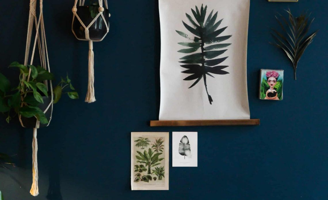 6 Hanging Plants to Keep Indoor Air Fresh